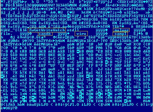 Unobfuscated hardcoded strings