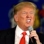 Donal Trump en campagne, DR