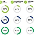 Rapport Deloitte pour Facebook