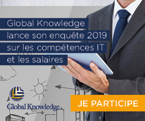GlobalK_IT skills and salary 2019 _pave
