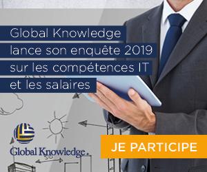 GlobalK_IT skills and salary 2019 _pave